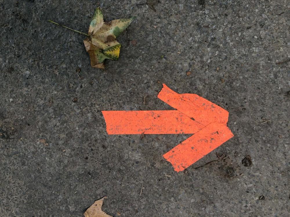 objectivity-blog-arrow